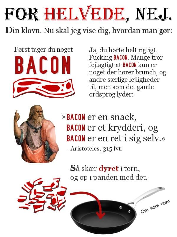 """FOR HELVEDE, NEJ. Din klovn. Nu skal jeg vise dig, hvordan man gør. Først tager du noget BACON. Ja, du hørte helt rigtigt. Fucking BACON. Mange tror fejlagtigt, at BACON kun er noget der hører brunch og andre særlige lejligheder til, men som det gamle ordsprog lyder: """"BACON er en snack, BACON er et krydderi og BACON er en ret i sig selv"""" - Aristoteles, 315 f.v.t. Så skær dyret i tern og op i panden med det."""